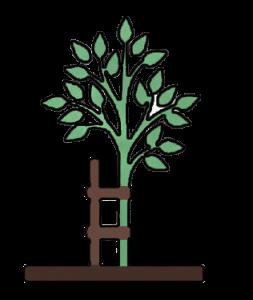 tree_planting