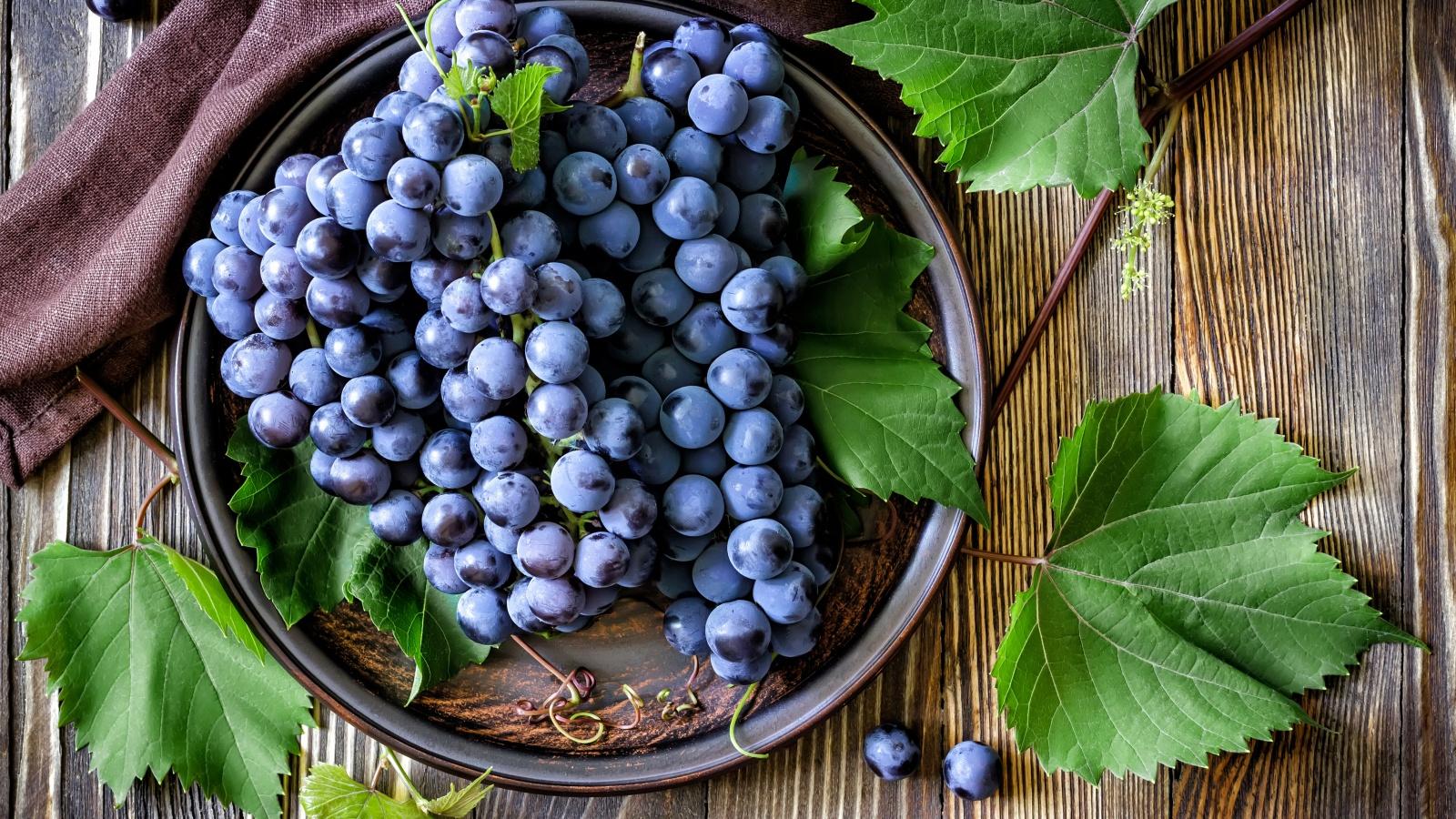 vinograd-krasnyy-listya-yagody